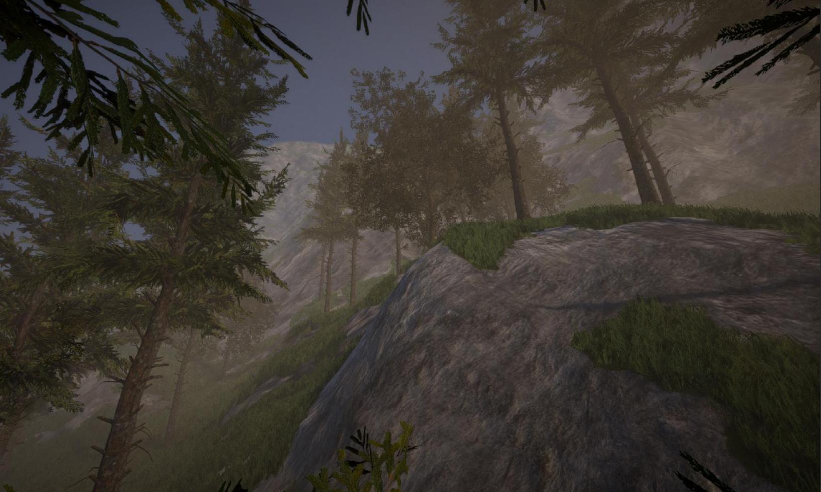 terrain1.jpg
