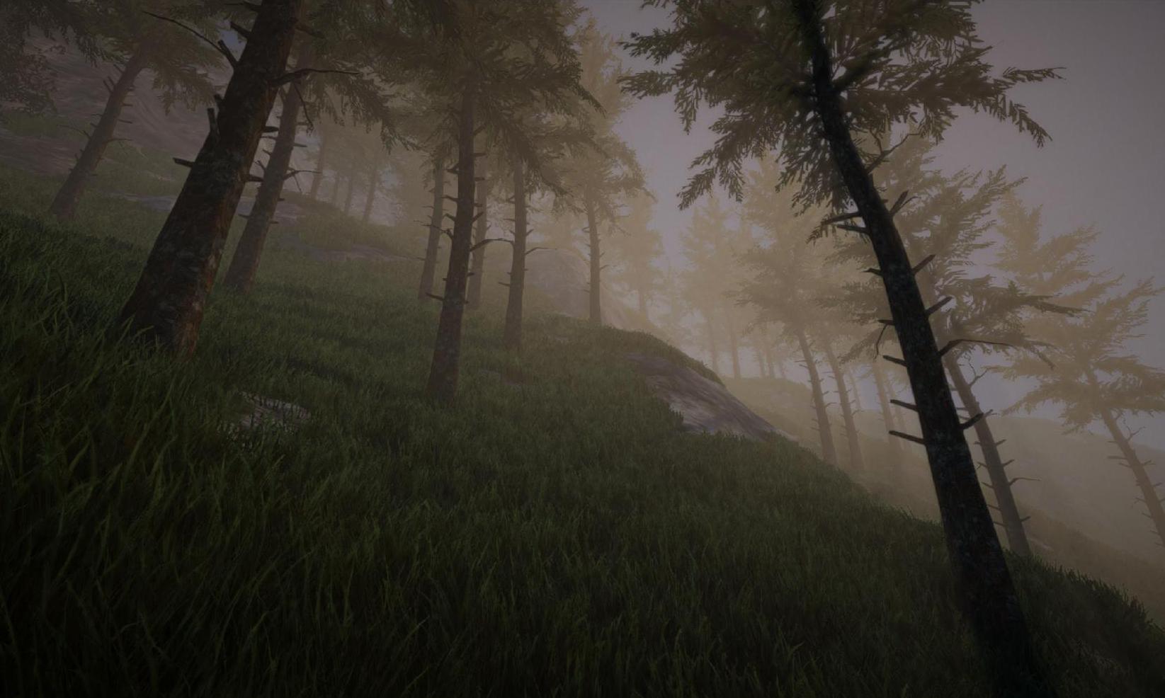 terrain2.jpg