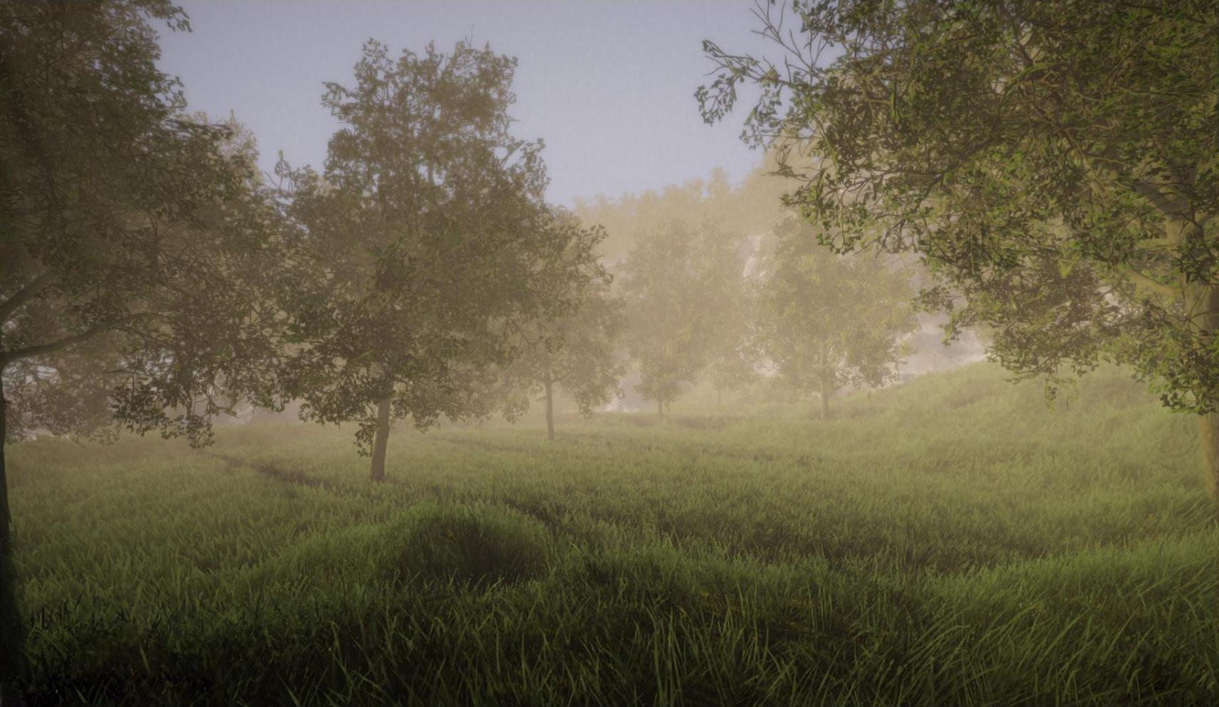 vegetation2.jpg
